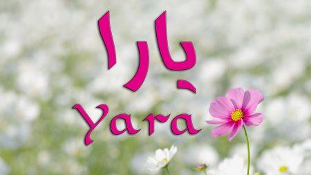 احلي صور بأسم يارا (2)