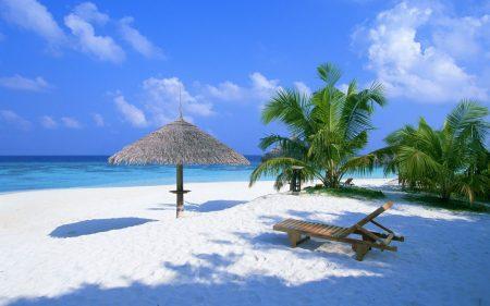 جزيرة المالديف (3)