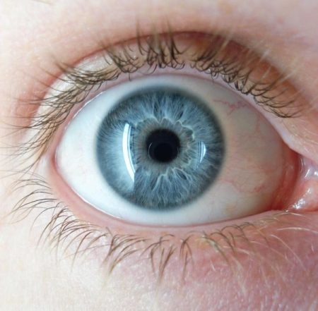صور عيون ملونه جميلة (1)