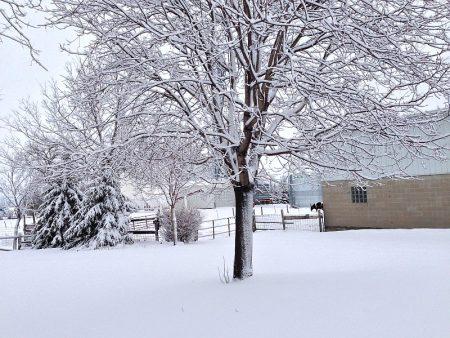 رمزيات عن الشتاء 2016 (2)