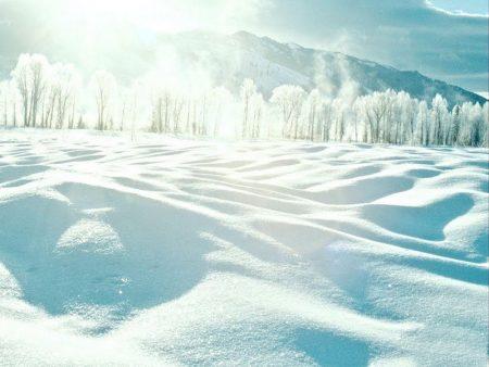 صور عن الشتاء 2016 (2)