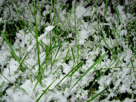احلي صور من الشتاء (1)