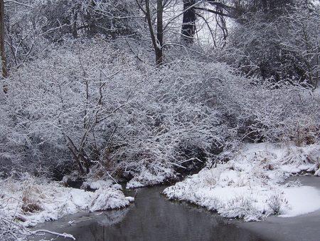 خلفيات عن الشتاء (4)
