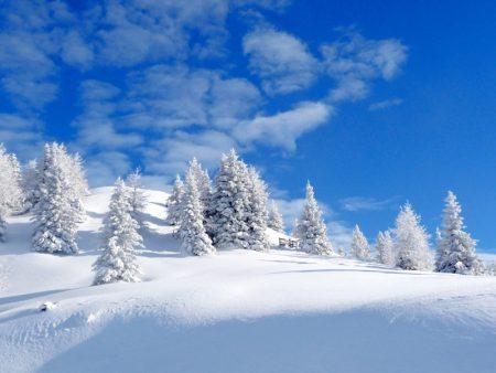 خلفيات عن الشتاء (5)