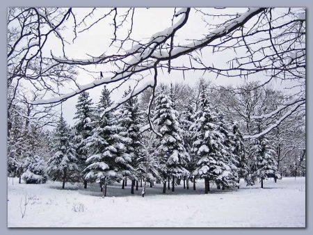 صور تعبر عن الشتاء (2)