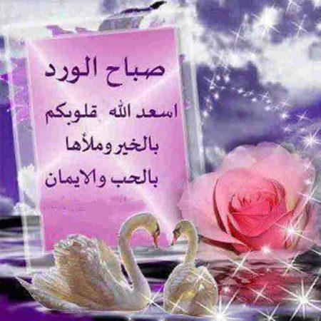 صور جميله صباح الخير  (1)