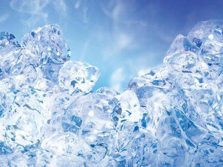 فصل الشتاء (1)