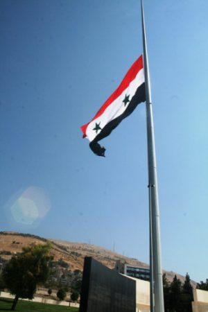 احلي علم سوريا (2)