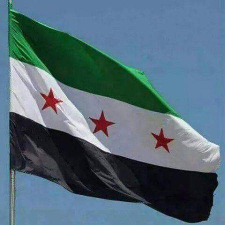 اعلام سوريا (2)