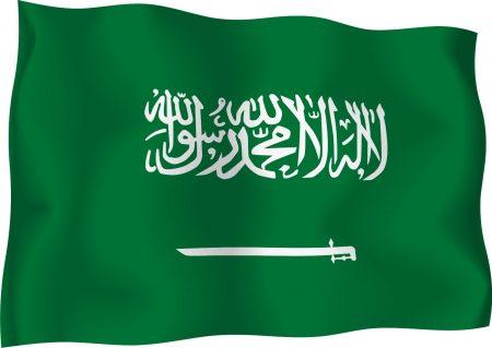 العلم السعودي بالصور (2)