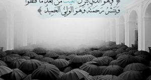 خلفيات ورمزيات عن المطر (3)
