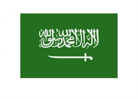 علم السعودية بالصور (3)