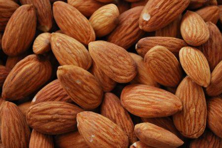 almonds photos (1)