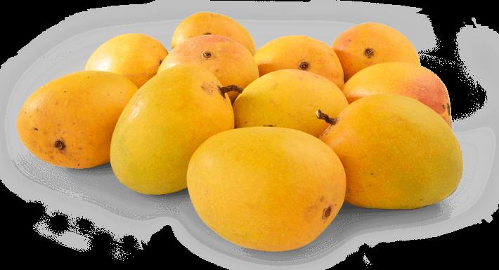 Pubg Hd Png Background: صور مانجو خلفيات ورمزيات فاكهة المانجو HD