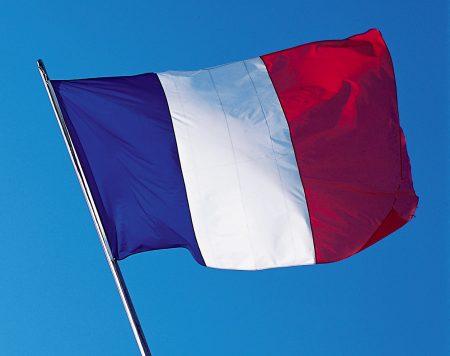 دولة فرنسا علم رمزيات وخلفيات (2)