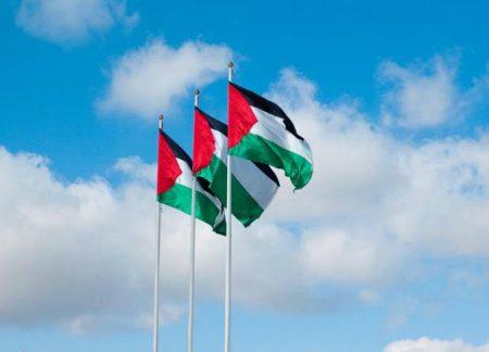 رفرفة علم فلسطين (4)