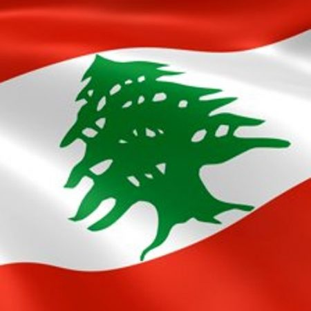 صور العلم اللبناني (3)