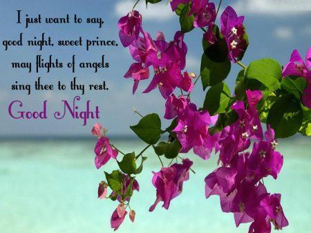 صور رمزيات مساء الخير (1)