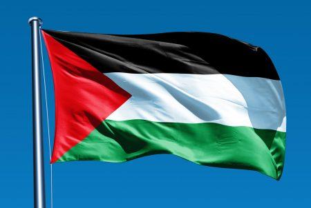 صور علم فلسطين (2)