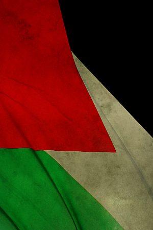 صور عن العلم الفلسطيني (1)