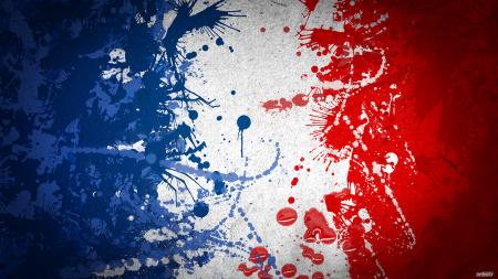 علم دولة فرنسا (1)
