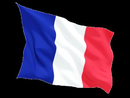 علم دولة فرنسا (3)