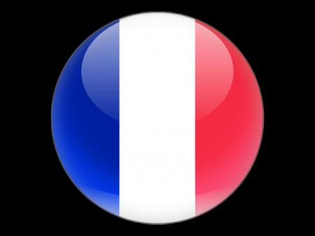 علم دولة فرنسا (4)