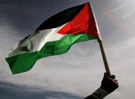 علم دولة فلسطين (2)