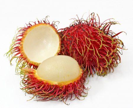 فاكهة (2)