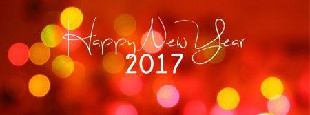 happy new year 2017 (2)