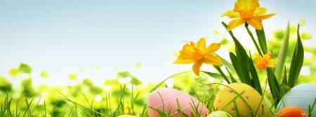 صور عن فصل الربيع 2017 رمزيات وخلفيات الربيع (1)