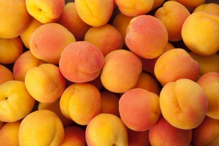 فاكهة المشمش (1)