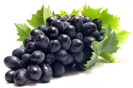 grapes photos (1)