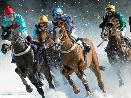 خلفيات خيول 2017 (3)