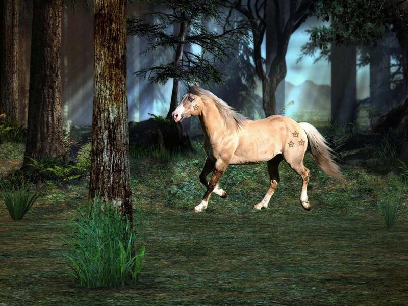 صور رمزية للخيول (3)