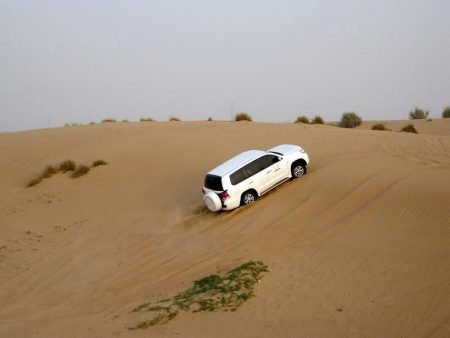 صور من دبي (1)