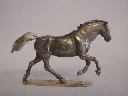 horses photos (1)