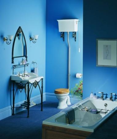 حمامات صغيرة باللون الازرق