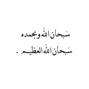 صور سبحان الله وبحمده سبحان الله العظيم (1)