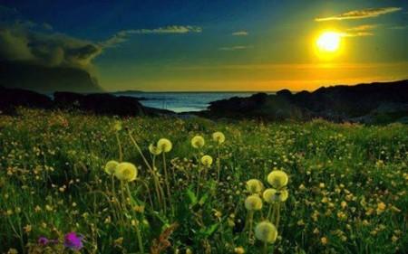صور شمس طبيعية