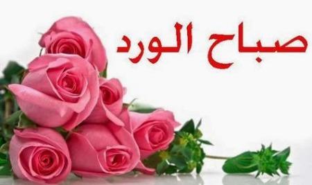 صورة صباح الورد