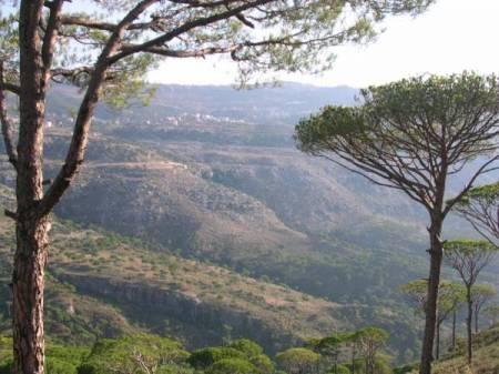 السياحة في لبنان (3)