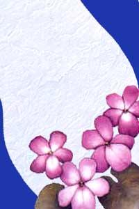 برواز وردة