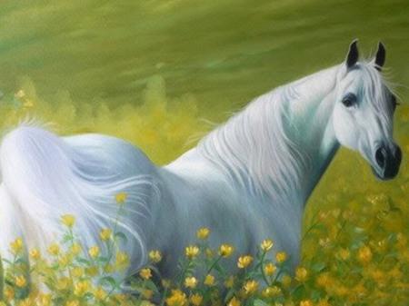 حصان مختلف