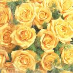 صور باقات ورد جميلة