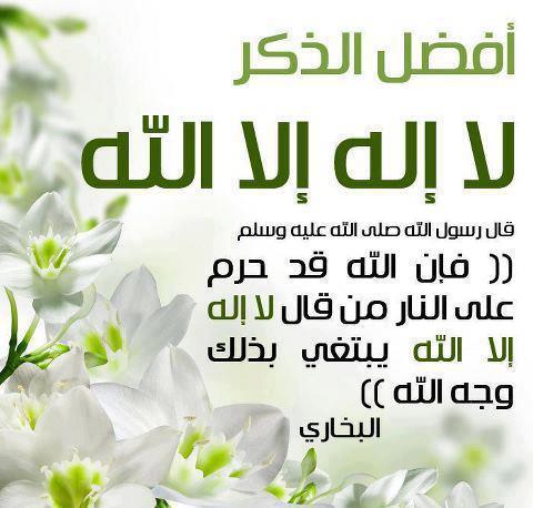 صور خلفيات اسلامية جديدة (3)