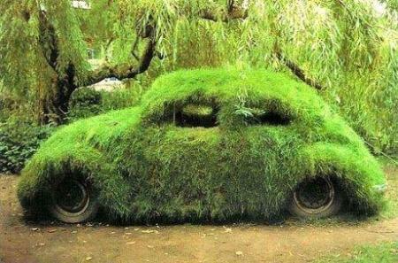 احلي حدائق منزلية بسيطة سيارة