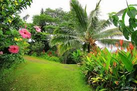 احلي حدائق (2)