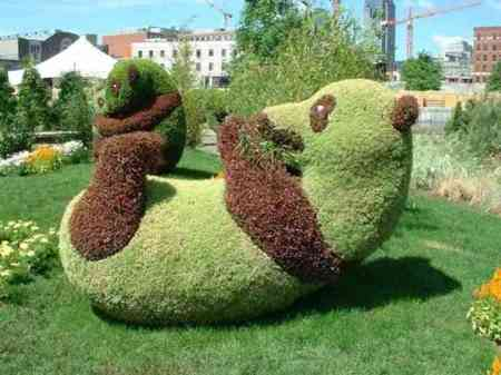 تصميم حدائق دبدوب