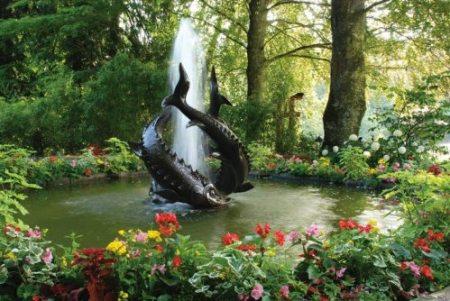 حدائق جميلة